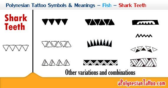 polynesian-tattoo-symbols-meanings-fish-shark-teeth-2