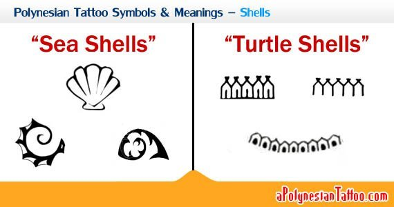 polynesian-tattoo-symbols-meanings-shells-2