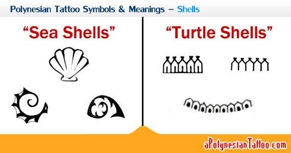polynesian-tattoo-symbols-meanings-shells-2